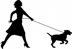 NLP für Hundetrainer /Innen